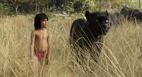 Manu Zapata_El cine (de estreno) fácil de leer_vivazapata.net_EL LIBRO DE LA SELVA_Mowgli y Bagheera entre la maleza