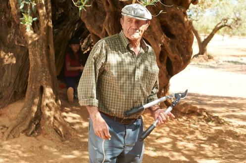 Manu Zapata_El cine (de estreno) fácil de leer_vivazapata.net_EL OLIVO_Abuelo y Alma refugiada en el tronco del olivo