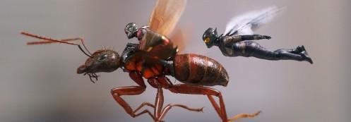 Manu Zapata_El cine (de estreno) fácil de leer_vivazapata.net_ANT-MAN Y LA AVISPA_Ant-man y la Avispa