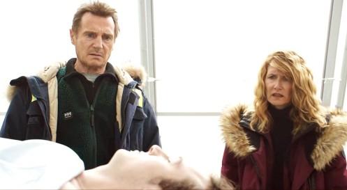 Manu Zapata_El cine (de estreno) fácil de leer_vivazapata.net_VENGANZA BAJO CERO_Liam Neeson y Laura Dern y su hijo muerto